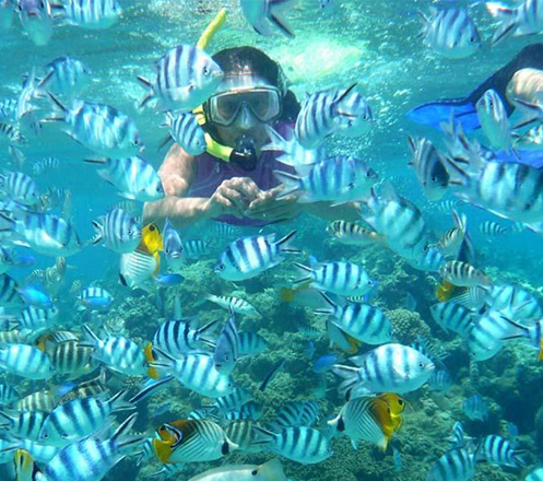 Open Trip Pulau Pramuka 2D1N