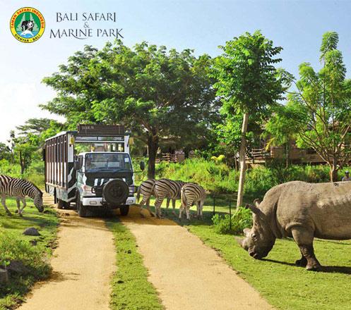 Bali Safari dan Marine Park (Safari Explorer) for Adult