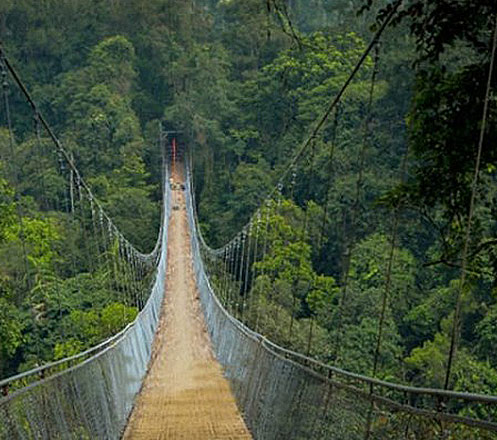 One Day Tour Suspension Bridge & Curug Sawer