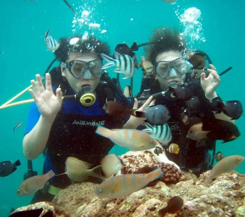 Scuba Diving 2x at Nusa Dua Bali