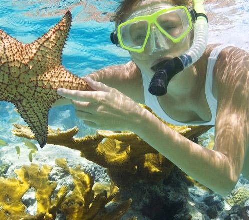 Snorkeling at Bali