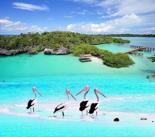 4D3N Kepulauan Kei Maluku
