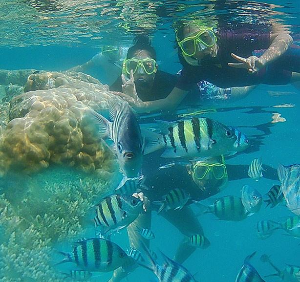 Open Trip Harapan Island 2D1N
